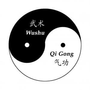 Tai Chi Lyon Taijiquan style Chen Diagramme Taichi Yin Yang Taiji Taijitu Taichi Yin Yang Taijitu Qigong Wushu Kungfu pinyin
