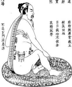 Liens entre Tai Chi et Yangsheng Médecine Traditionnelle Chinoise MTC Tai Chi Lyon Taichi Chuan