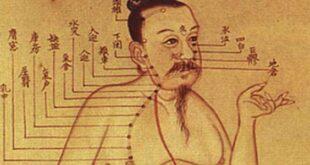 Liens entre Tai Chi et Medecine Traditionnelle Chinoise MTC Tai Chi Lyon Taichi Chuan