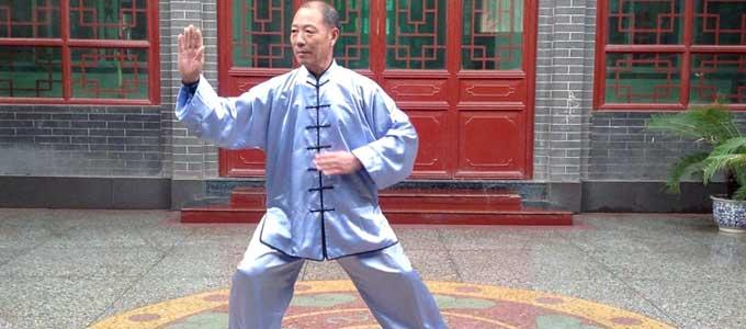 Videos Tai Chi style Chen Collection Lyon