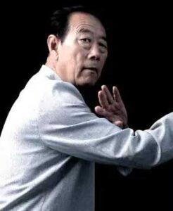 Taichi style Wang Xi An Laojia Chenjiagou Tai Chi Lyon