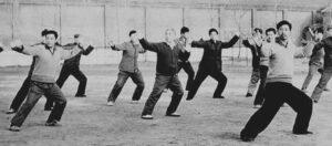 Taichi style Chen Laojia Videos - Chenjiagou Taichi Lyon