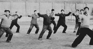 Video Taichi style Chen Laojia Chenjiagou Tai Chi Lyon