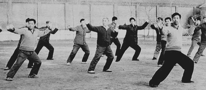 Video Taiji style Chen Laojia Chenjiagou - Vidéos Tai Chi Lyon