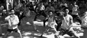 Nom des Mouvements du Tai Chi - Taijiquan style Chen Xinjia Galerie des Maitres