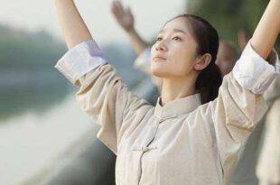 Tai Chi Lyon Taichi Initiation Taijiquan style Chen
