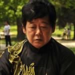 Taiji Quan style Chen Xinjia Video - Chen Yu 陈瑜 Nouvelle Forme Zhaokui