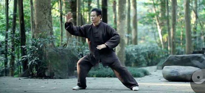 Taijiquan style Chen Xiaojia Chen Lifa Li Fa Tai Chi Lyon