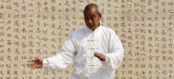 Taijiquan style Chen Xiaojia Chen Liu You Tai Chi Lyon