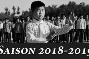 Tai Chi Lyon Cours Association Taichi style Chen 2018 2019
