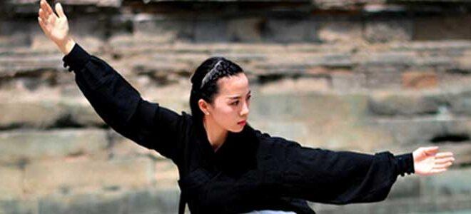 Tai Chi Week End Lyon Dimanches TaiChi Taijiquan style Chen Octobre 2019
