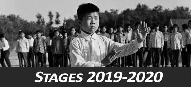 Stage-Taiji-Quan-style-Chen-Lyon-2019-2020