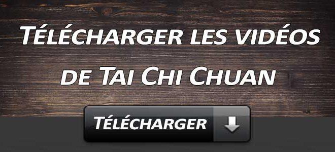 Telecharger Video Tai Chi Chuan Lyon Taijiquan style Chen