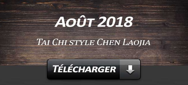 Telecharger Video Tai Chi Style Chen Laojia Aout 2018 Lyon
