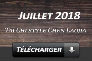 Telecharger Video Tai Chi Style Chen Laojia Juillet 2018 Lyon