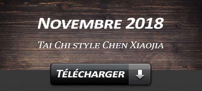 Telecharger Video Tai Chi Style Chen Xiaojia Novembre 2018 Lyon