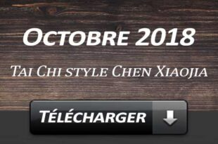 Telecharger Video Tai Chi Style Chen Laojia Septembre 2018 Lyon