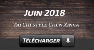 Telecharger Video Tai Chi Style Chen Laojia Juin 2018 Lyon