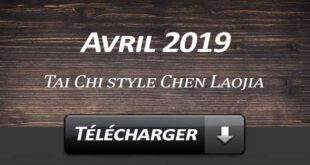 Telecharger Video Tai Chi Style Chen Laojia Avril 2019 Lyon