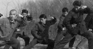 Chenjiagou Video Tai Chi style Chen Vintage 1981 Tai Chi Lyon Taijiquan