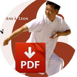 Tai-Chi Lyon cours Taijiquan Chen Style Brochure PDF