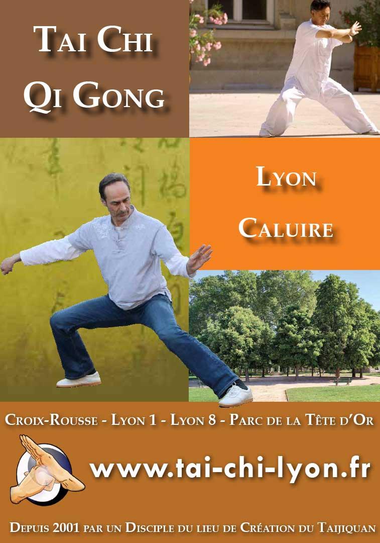 PDF Qi Gong Lyon Qigong Croix-Rousse Parc Tête d'Or