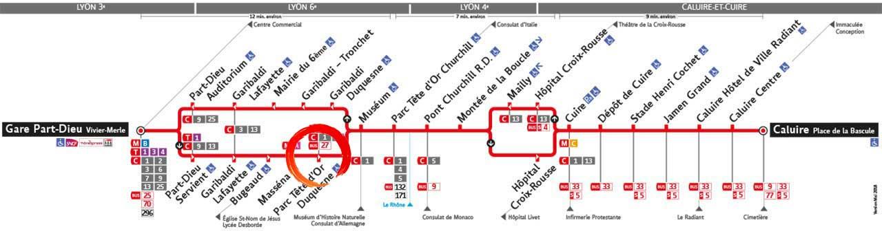 Tai-Chi Parc Tete Or Lyon 6 TCL Ligne 38