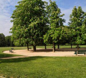 Tai Chi Lyon Parc Tête d'Or Taijiquan style Chen Tai-Chi Chuan Taichi Taiji Quan