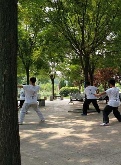taijiquan-parc-chenjiagou